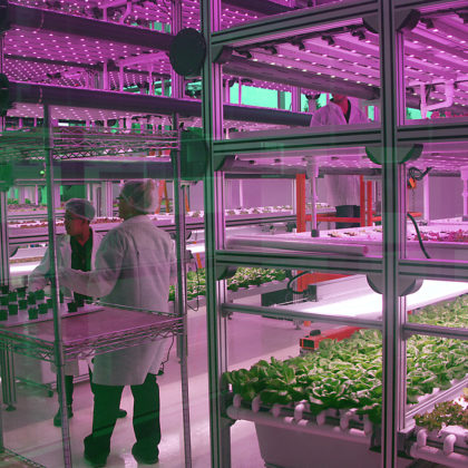 Indoor Farm Driven By IoT 47Billion